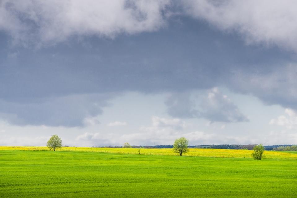 Saldus ainava Kūmu ceļš Kūmas pavasaris kurzemē kurzeme dabas fotogrāfs fotogrāfs Saldū kurzemē rīgā kuldīgā liepājā ventspilī dobelē bauskā valmierā jūrmalā jelgavā